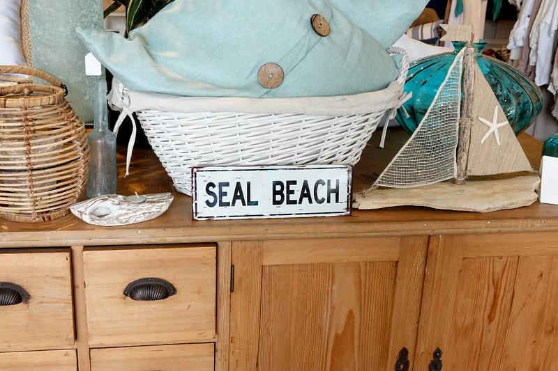 seal beach-037.jpg