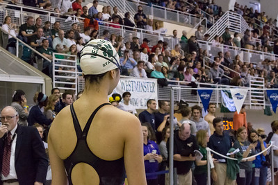 Swim & Dive State Meet Finals February 3, 2018
