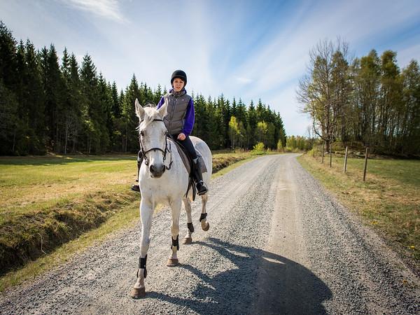 Camillas hästar