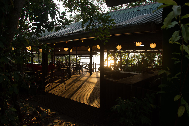 Borneo-2014-80.jpg