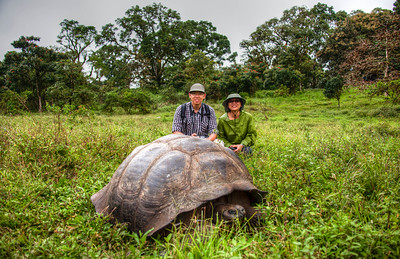Galapagos  Islands  - Galapagos Giant Tortoises 2012