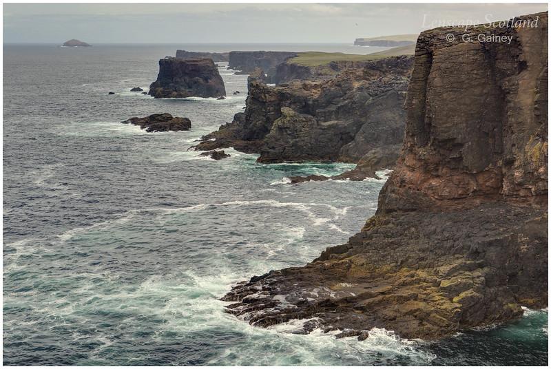 Cliffs at Esha Ness (3) (north Shetland mainland)