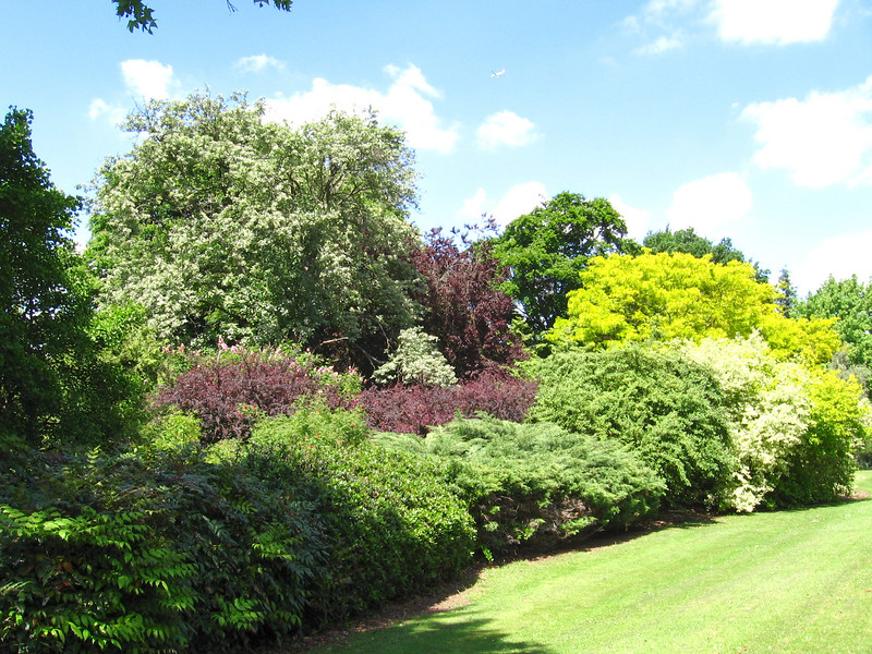 The gardens at Frogmore