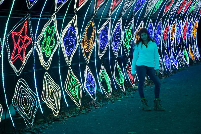 dragon lights 2018-8048.jpg