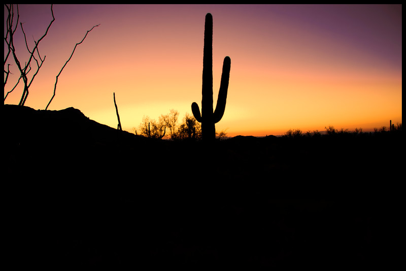 Arizona Sunrise