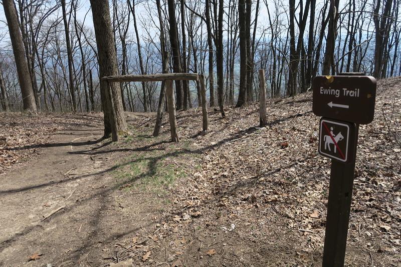 Ridge-White Rocks Overlook Trail Junction - 3,300'
