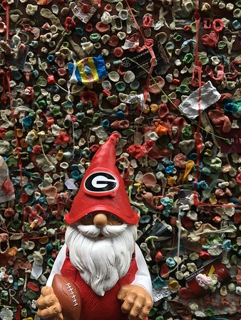 UGA Gnome in Seattle