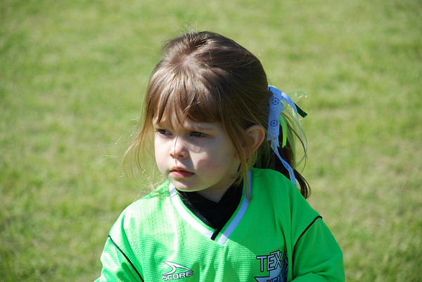 2008-03-08 Dinos