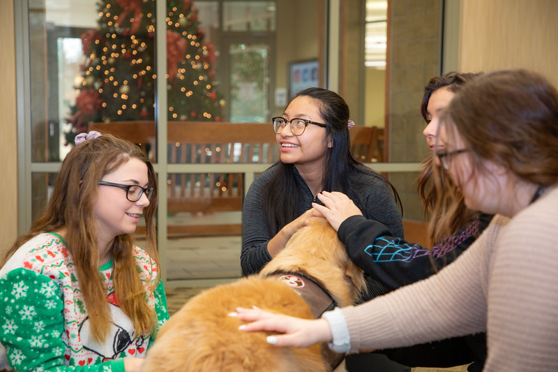 Therapy Dogs Sassy-7083.jpg