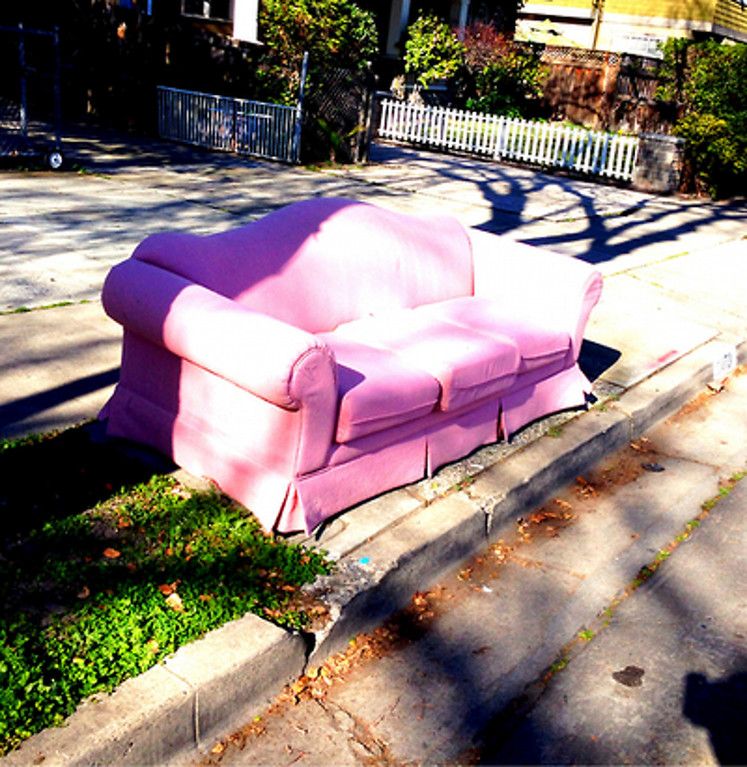 ". Henry Solis of San Jose noticed the quantity of couches kicked to the curb, so he started a photo blog and plans to make and sell Ugly Couch T-shirts. Check it out at <a href=""http://sjstreetsofas.tumblr.com\"">sjstreetsofas.tumblr.com</a>."