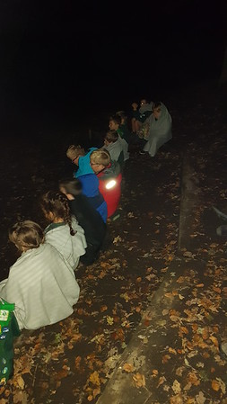 Fanwood joint residential cubs and beavers