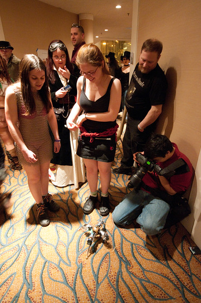 Cute little robot draws a crowd of admirers
