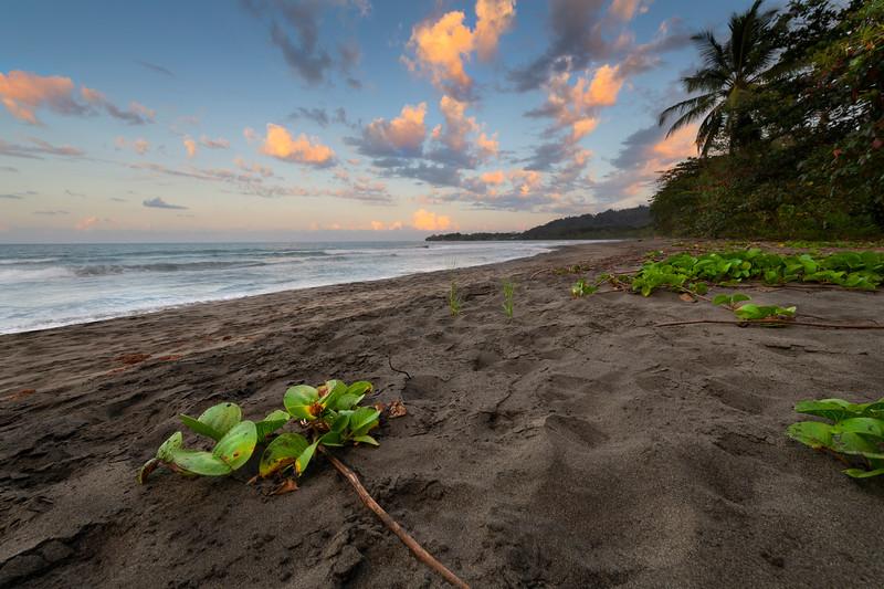 caribe coast.jpg