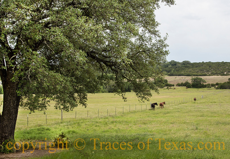 All of My Photos of Texas Gallery 2