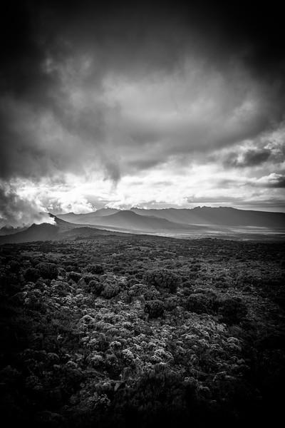 Kilimanjaro_Feb_2018-41.jpg