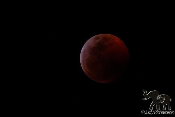 Moon Shots ~ Kailua