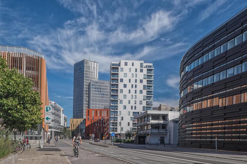 Copenhagen%202016-288.jpg