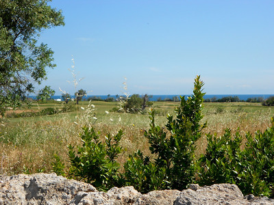 PugliaMay2012