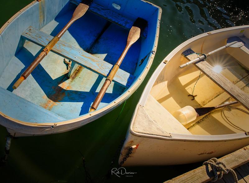 2019_10_Acadia20191019-_A5A0376-Edit_Luminar2018-edit.jpg