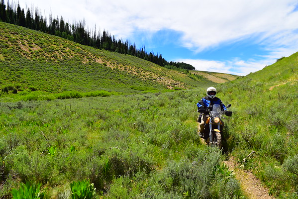 Duchesne/Uinta ride with Rob & Chris July 2016
