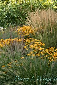 Joan's front landscaping - Linda Meyer designer Lake O
