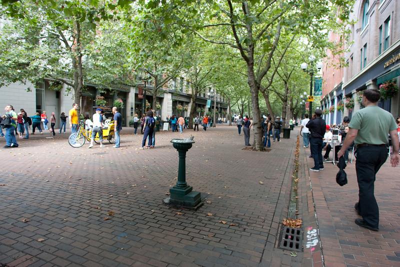 flashmob2009-322.jpg