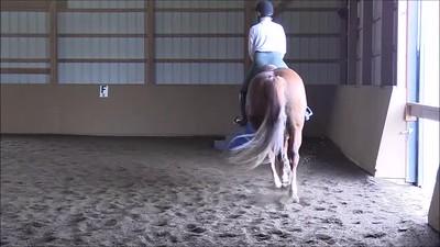 TSRC 2019-04-08 Milestone Sport Horses Video