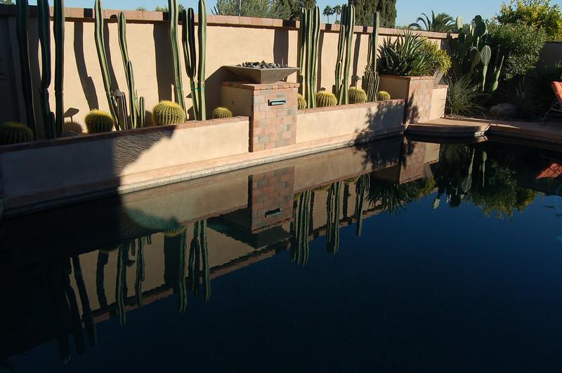 20121105_Arizona_Garden_002.JPG