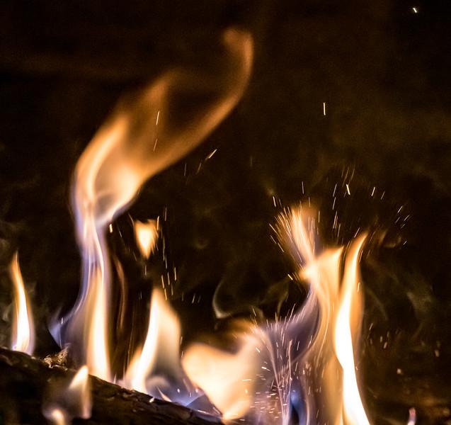 20190816 Campfire-25.jpg