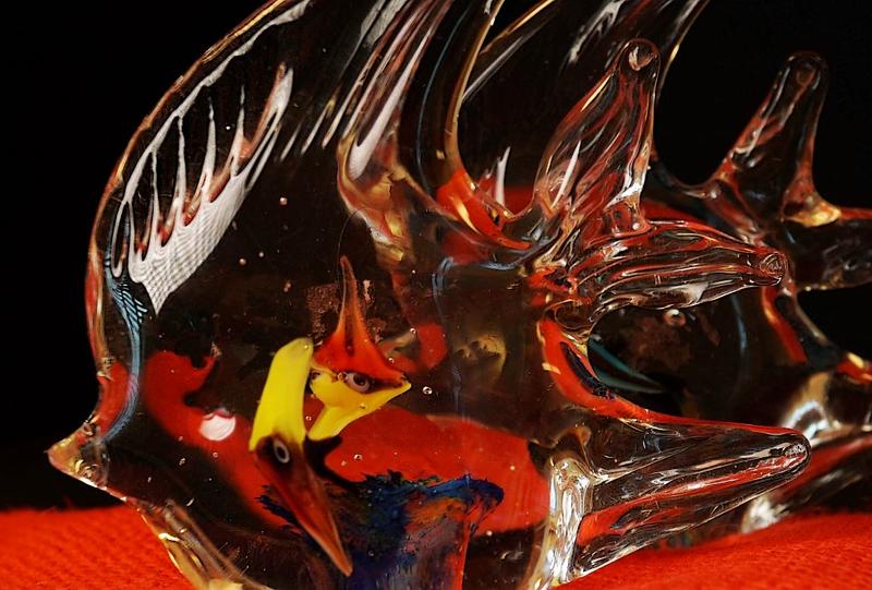 glass fish r.jpg