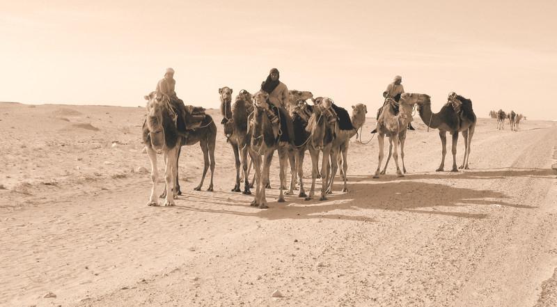 Douz Camel riders old.jpg