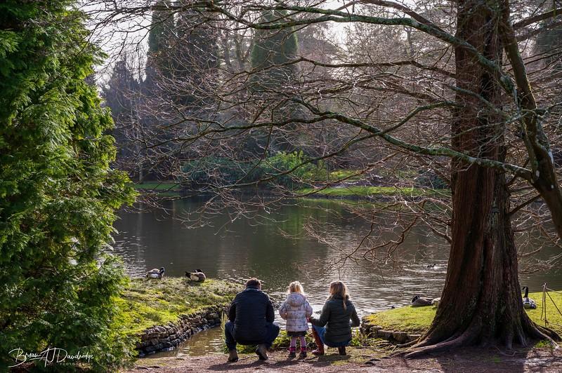 Sheffield Park-0190.jpg