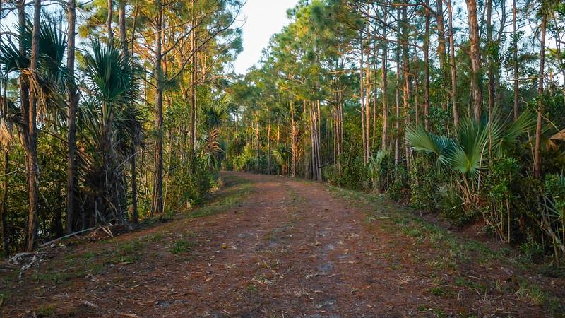 SWA Greenways Trail System (Joseph Forzano / The Palm Beach Post)