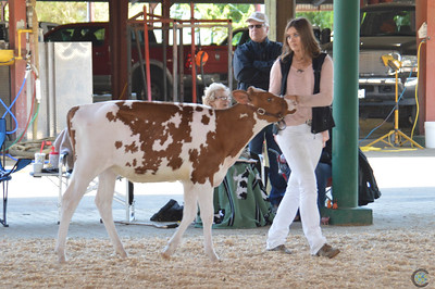 California State Showmanship 2018