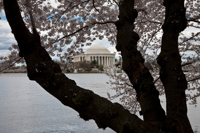 2009-04-03-Washington-DC-0103.jpg