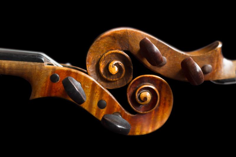 Violin Koru.jpg