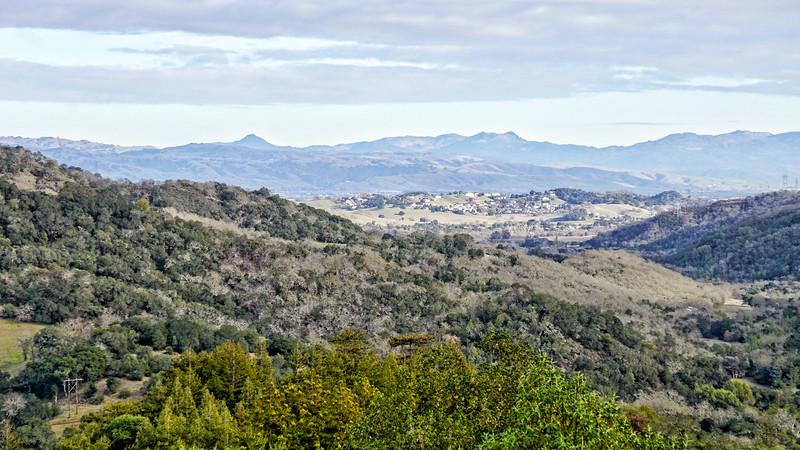 Kysle's Redfwood Retreat 1.jpg