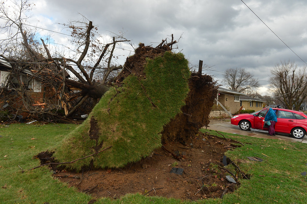 . A tree was pulled out of the ground by the roots, collapsing onto a house after a tornado left a path of devastation through the north end of Pekin, Il.,Sunday, Nov. 17, 2013. Intense thunderstorms and tornadoes swept across the Midwest on Sunday, causing extensive damage in several central Illinois communities while sending people to their basements for shelter. (AP Photo/Journal Star, Fred Zwicky)