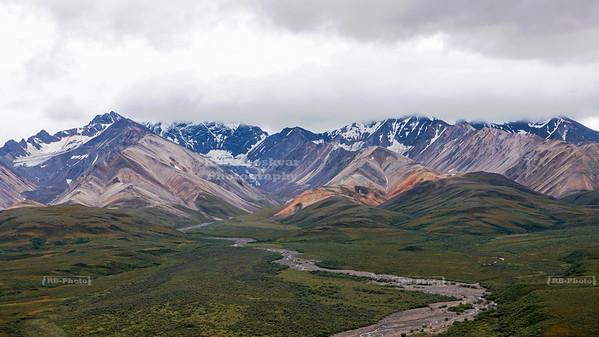 USA, AK - Denali National Park