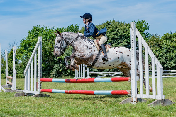 Show Jumping Arena - Novelty Round - 'Scrurry'