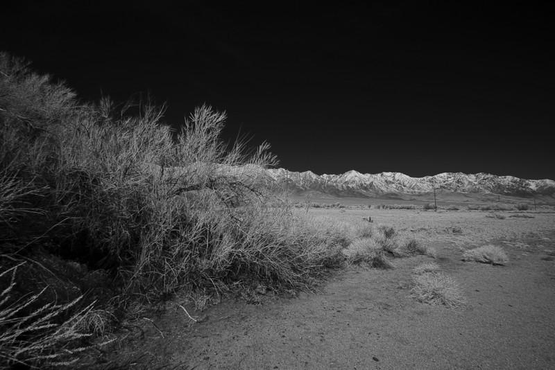 manzanar-housing-block.jpg