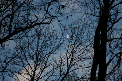 Ciels - Lune - Fin de Journée