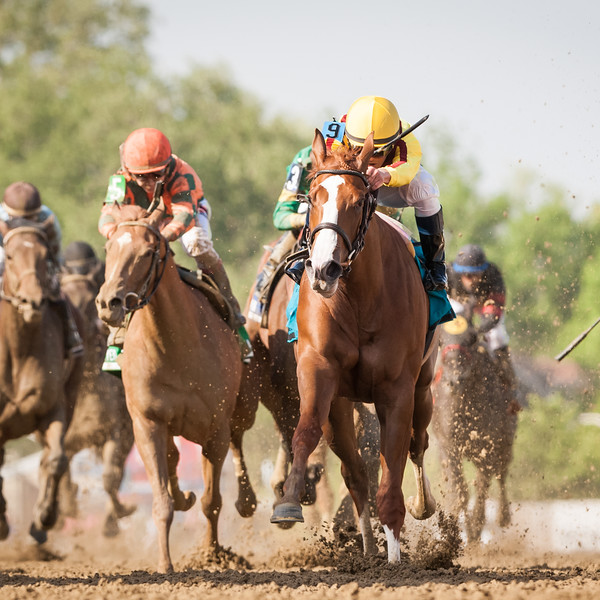 Keen Pauline (Pulpit), Javier Casellano up, wins the Black Eyed Susan at Pimlico 5.15.15. Trainer: Dale Romans, Owner: Stonestreet Stables.