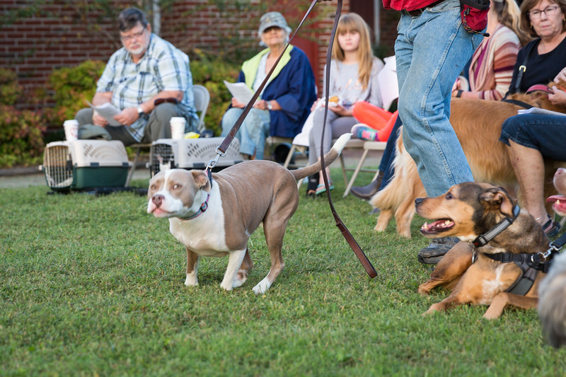 Blessing of the animals 10-3-2017 (144).jpg