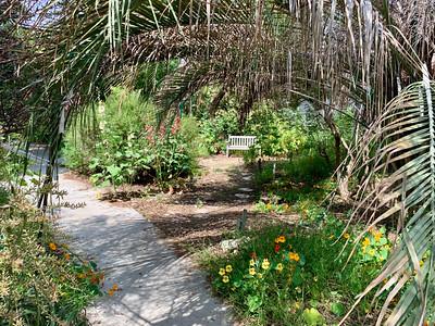 Botanical Garden #1