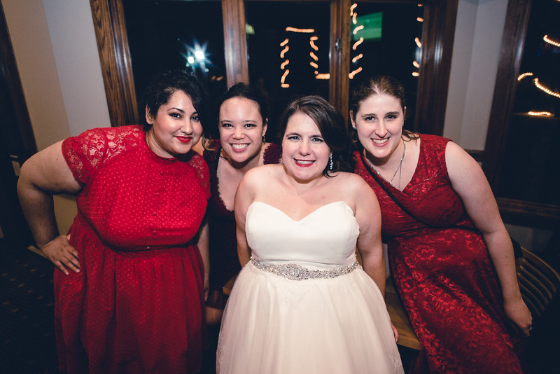 Chicago Wedding Engagement Photographer 2193.jpg