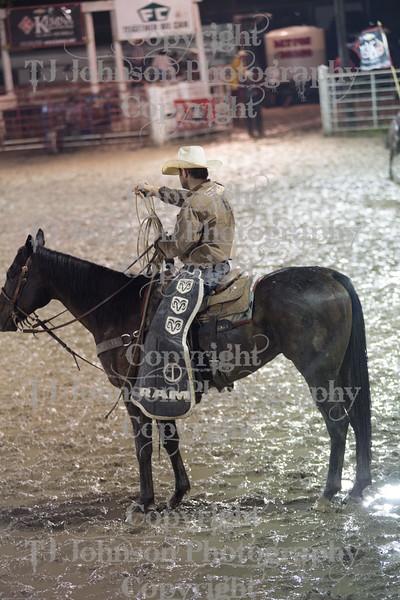 2014 Dayton Rodeo Bulls - Friday