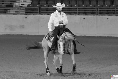 Wednesday Novice Horse Set 3 16-23