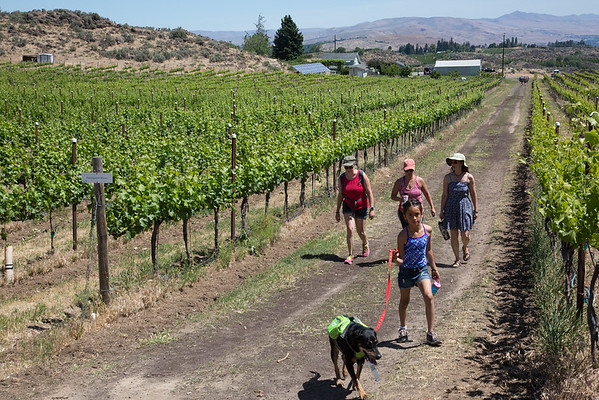 2018-05-27 Cowiche Canyon Winery Trail, Yakima