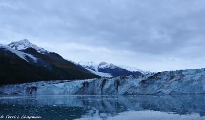 Glaciers of College Fjord